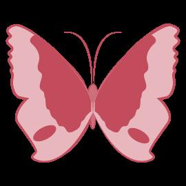 Schmetterling als Symbol Organisation