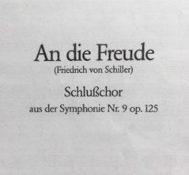 An die Freude – Eine kritische Textanalyse des Alto-Chorlibrettos