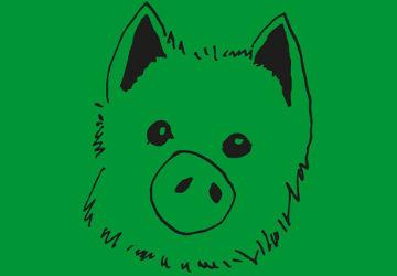 Sechs beste Beispiele für den Schweinehundführerschein