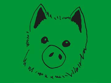 Beispiele-Schweinehundfuehrerschein-360x270